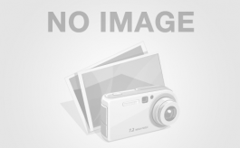 MERCEDES BENZ - SPRINTER 311